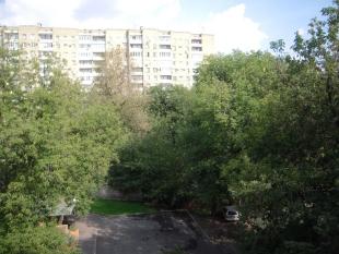 Общежитие Московской консерватории. Деревья